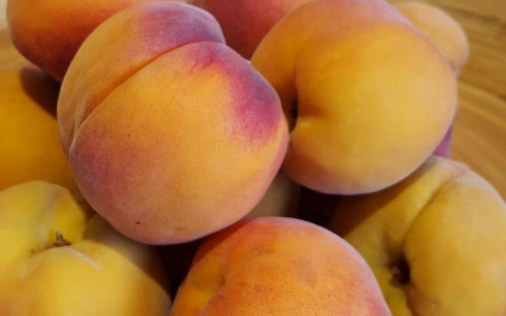 Peach Healey's Peacherine